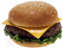 Cheeseburger in Sarasota Florida