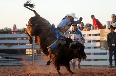 Bull Riding Myakka City, Florida