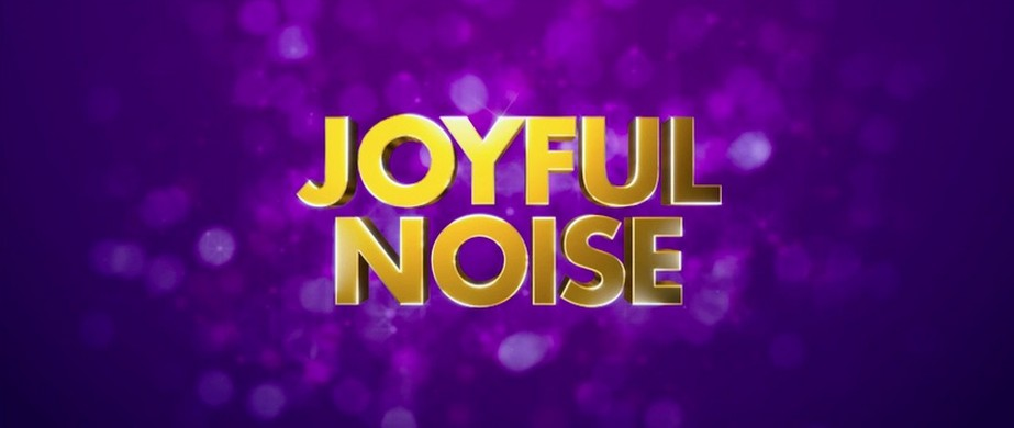 Joyful Noise, Sarasota Noise Ordinance