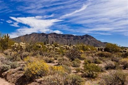 Meza, Arizona
