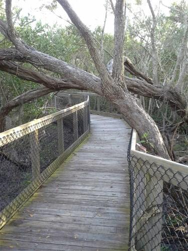 State Park, Palmetto, Florida