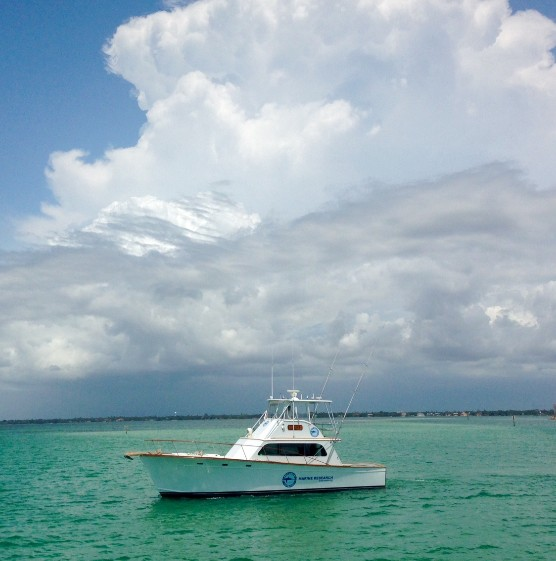 Mote to christen Boca Grande-based research vessel