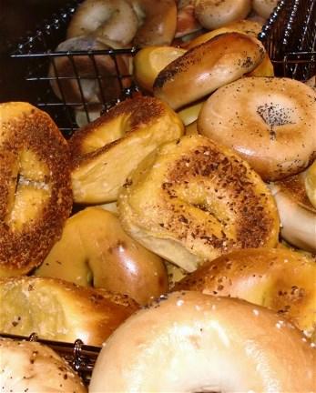 Long Island Bagels