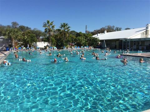 Sun n Fun Sarasota Florida
