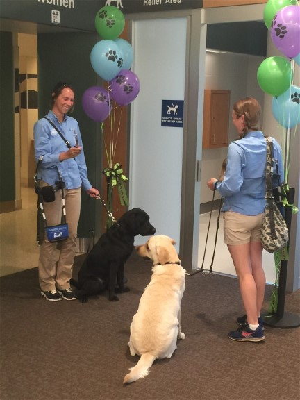 "Traveling with pets? A unique ""Relief Station"" was just installed past security at gate B2 to accommodate pets and service animals traveling with passengers."