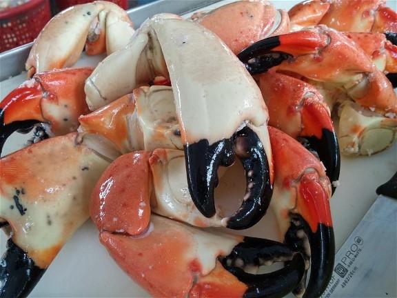 Stone Crab Festival Cortez, Florida