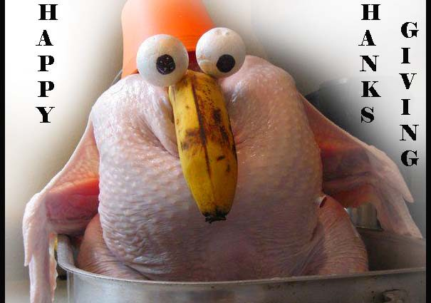 Happy Thanksgiving From The Sarasota Post