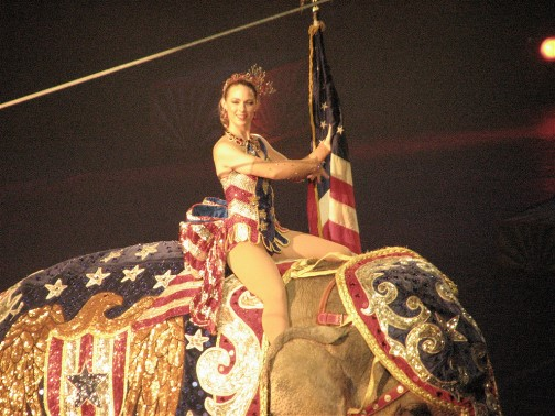 Dreaming of the Circus- The Ringling Legacy Lives on in Sarasota