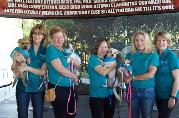 The Humane Society At Lakewood Ranch- You Will Fall In Love!