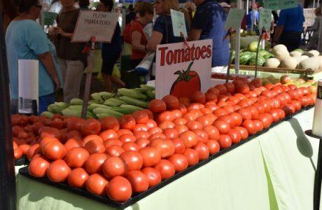 Nothing Better Than Sarasota Farmers Market