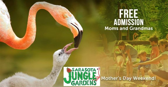 Sarasota Jungle Gardens- Mother's Day Free Admission For Moms, Grandmoms with Their Kids