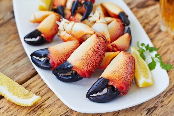Phenomenal Stone Crab Season- Almost Three Million Pounds!