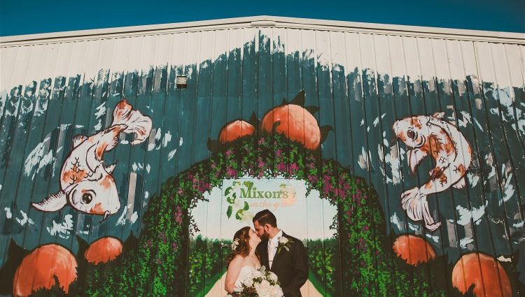 The Pavilion Under the Stars at Mixon Farms, A Bridal Event