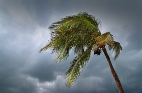 Hurricane Irma- A Little Hint from a Country Boy, Ron Furner