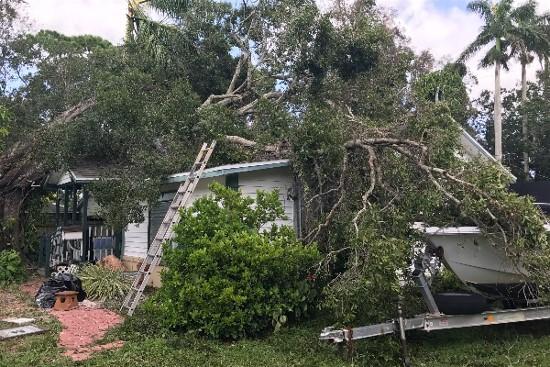 Hurricane Irma has devastated some Local Musicians