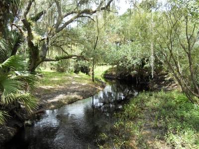 Camping in Sarasota County- Fabulous!