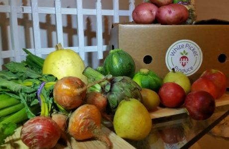 White Picket Produce CELEBRATES 3 years of organic Deliveries