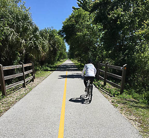 Biking on the Legacy Trail Sarasota County, FL