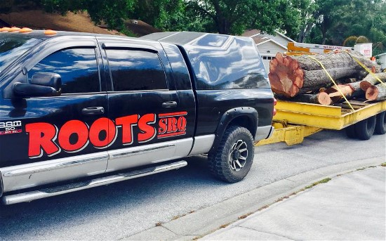 """Need Tree Removal? Dumpster? Landscaping? Sarasota-Bradenton """"RootsSRQ"""" Can Do it All"""