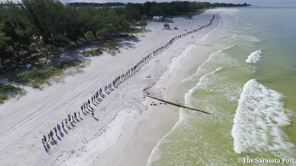 Bradenton Beach / Coquina Beach / Anna Maria Island Join Hands Along the Water