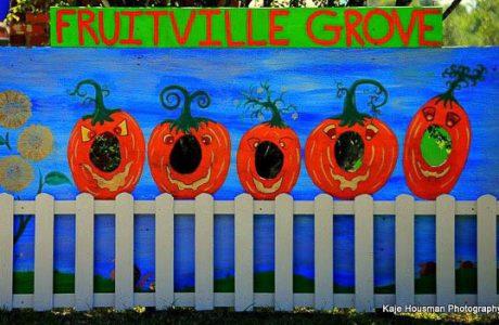 It's Fall Y'allAt Fruitville Groves