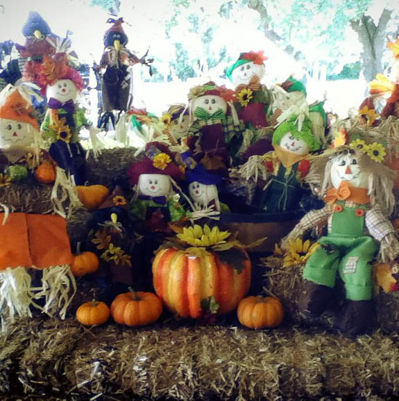 Pumpkin Festival at Fruitville Grove will be dynamic!