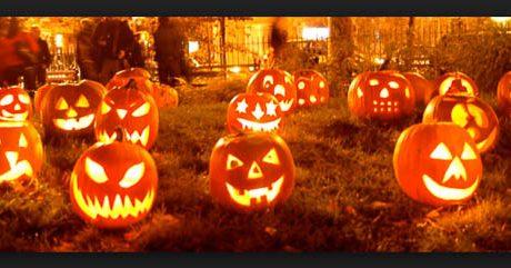October Festivals in Sarasota & Bradenton