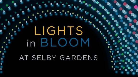 Lights in Bloom at Selby Gardens in Sarasota, FL