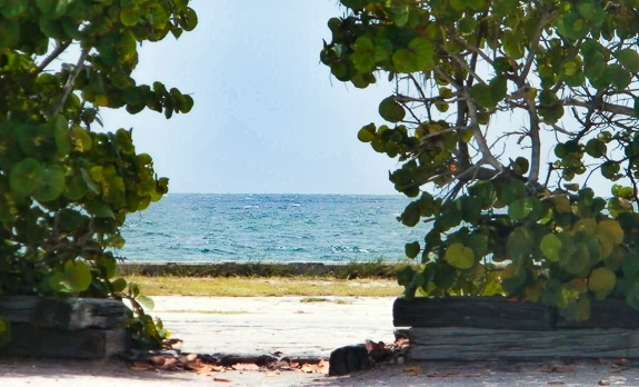 """Summer, Summer, Summertime"" On Florida's Suncoast"
