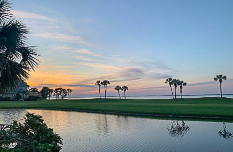 It's Summertime in Sarasota, FL