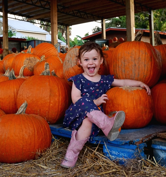 There will be a Kids Fun Zone at the Fruitville Pumpkin Fest in Sarasota, FL