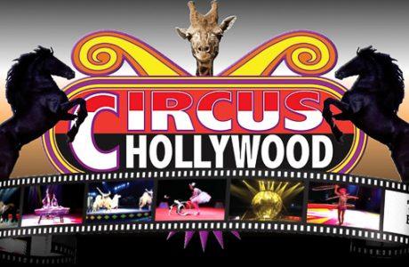 Hometown Circus Coming To Manatee PAL January