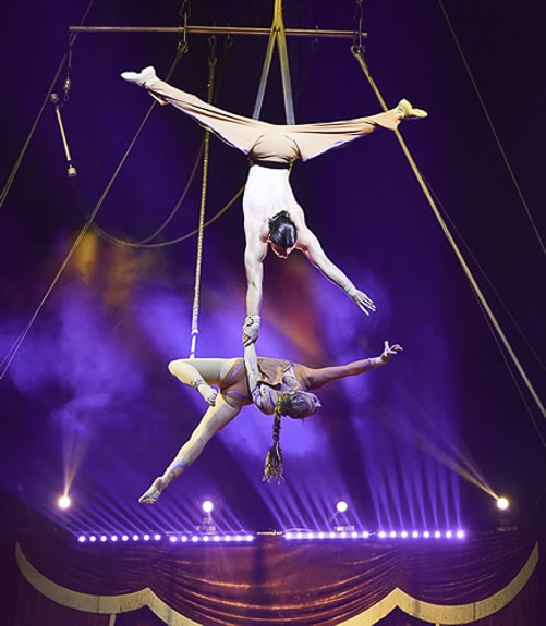 Circus Hollywood is bringing their act to Manatee PAL
