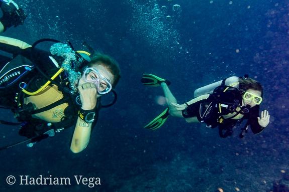 Top Diving Near Sarasota