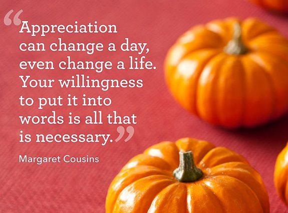 Stop Griping, Suncoast. Be Grateful!