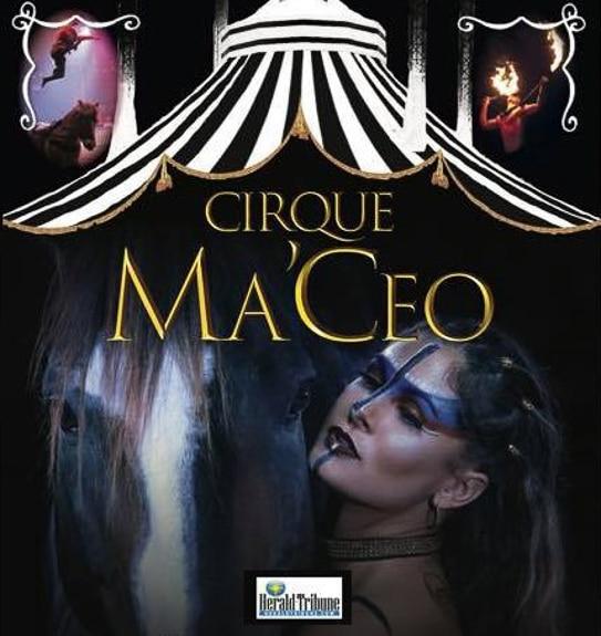 Cirque Ma'Ceo in Sarasota, FL