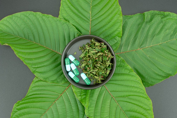 What is Kratom, and Why Did They Ban it in Sarasota Country?