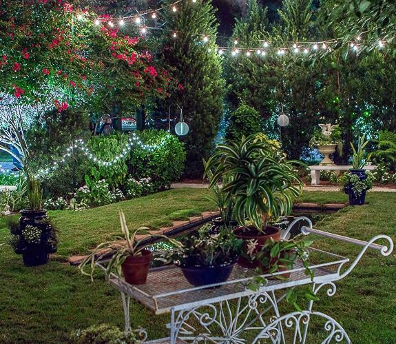 The Moonlight Garden