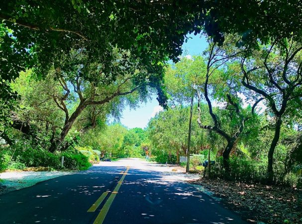 There are some great back road drives in Florida.