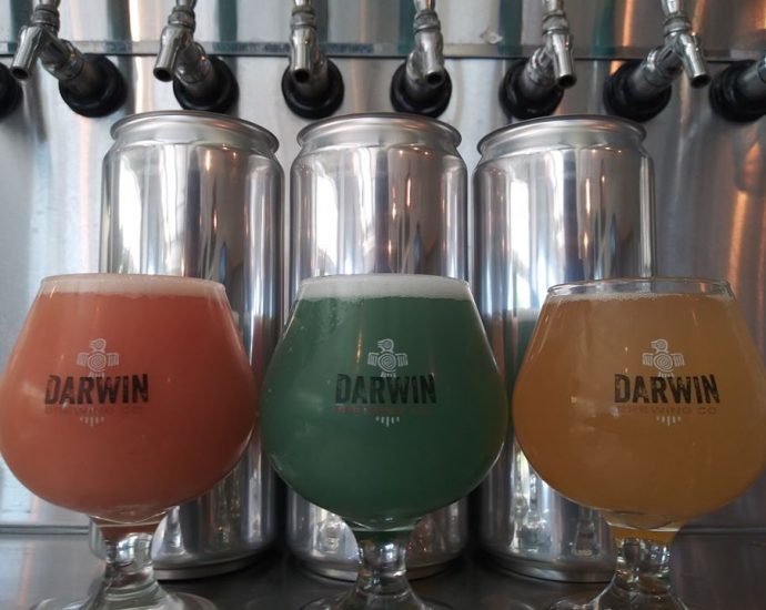 darwin brewing co and taproom
