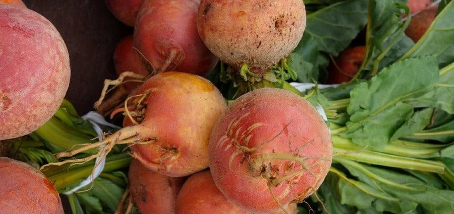 venice farmers market reopens