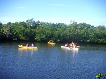 What's on at Lover's Key adventures