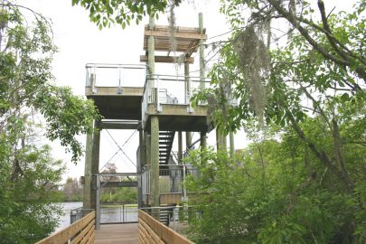 Lettuce lake observation tower