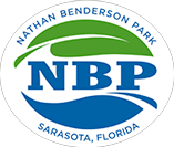 What's on at NBP