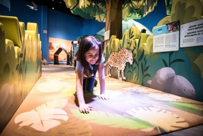 What's On Suncoast at the Museum