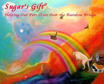 Sugar's Pet
