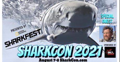 SharkCon On Suncoast