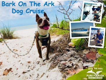 Bark On suncoast
